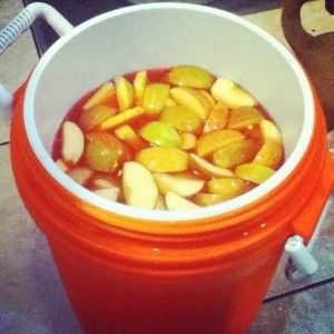 jungle juice recipe 10 gallon | Jungle Juice recipe | 5 gallon ...