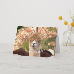 Cute Llama Birthday Cards | Zazzle